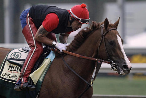 Kentucky Derby winner of California Chrome | INFORMALSPORTS | Scoop.it