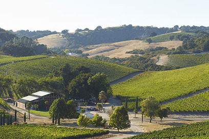2013 Wine Region of the Year: Paso Robles | Autour du vin | Scoop.it