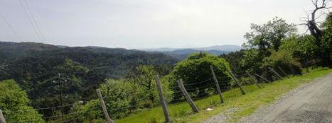 Randonnées en Cévennes - FIRA - BIQUETTES ET CULTURE DU SAFRAN | Cévennes Tourisme spécial FIRA 11 mai 2013 | Scoop.it