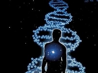 Where is human evolution heading?   Global Brain   Scoop.it