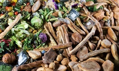 """Banning food waste: companies in Massachusetts get ready to compost (""""best  solution to food waste"""") 
