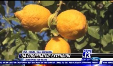 100 years for the Cooperative Extension Program | KOLD (TV-Channel 13, Tucson) | CALS in the News | Scoop.it