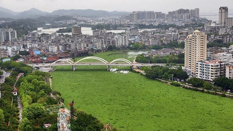 Inside China's grand plan to fight water pollution | Water issues in China | Scoop.it