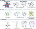 Algorithms in nature: the convergence of systems biology and computational thinking | Health and Biomedical Informatics | Scoop.it