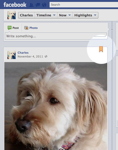 Facebook Timeline for Pages – The Ultimate Guide | SM | Scoop.it