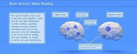 What Reading Really Looks Like When You're Dyslexic | INTRODUCTION TO THE SOCIAL SCIENCES DIGITAL TEXTBOOK(PSYCHOLOGY-ECONOMICS-SOCIOLOGY):MIKE BUSARELLO | Scoop.it