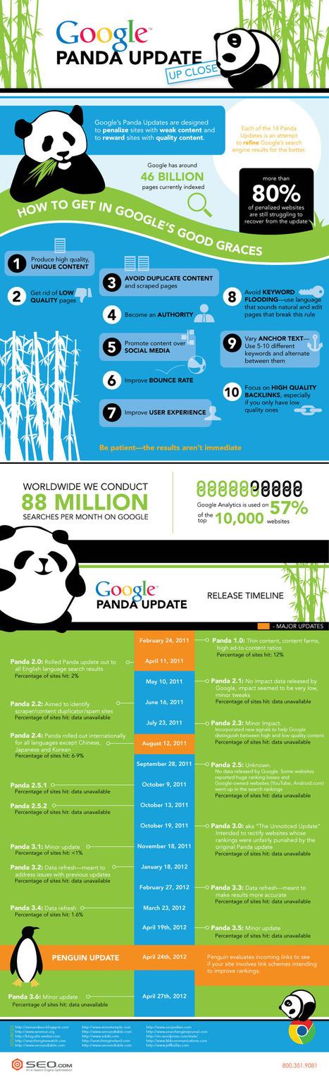 Google Panda Update Up Close [Infographic] | SEO.com | Marketing & Webmarketing | Scoop.it
