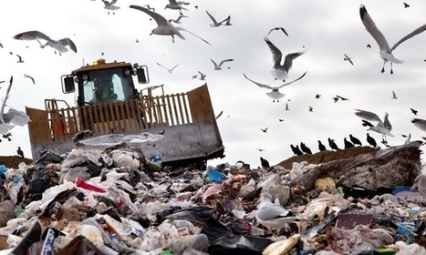 Biofuel from trash could create green jobs bonanza, says report | innovative ways to save the environment | Scoop.it