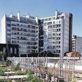 Un jardin qui vous veut du bien | Agriculture urbaine, architecture et urbanisme durable | Scoop.it