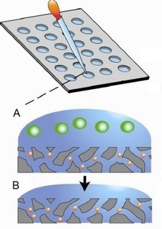Diagnosing Tuberculosis With A Nanotrap | Chemical & Engineering News | ProEd's Corner | Scoop.it