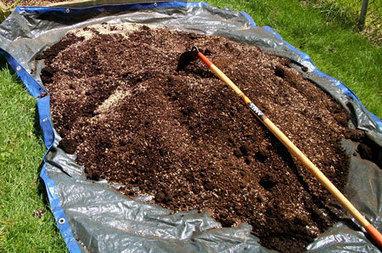 How do I grow organic marijuana?   Grow Weed Easy   electronic   Scoop.it