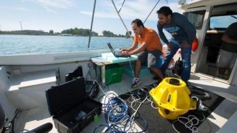 Подводният интернет може скоро да дойде и до вашето море ... | Tенденциите в нетуъркинга и социалните мрежи | Scoop.it
