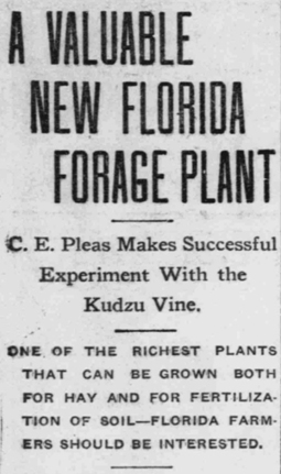 Kudzu: The Vine that Ate the South « South Carolina Digital ... | Century & Centennial Farm News | Scoop.it