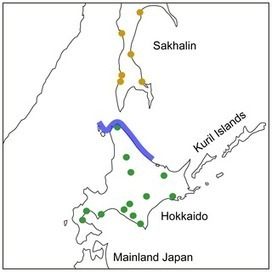 Evolution of the Ainu Language in Space and Time | Social Foraging | Scoop.it