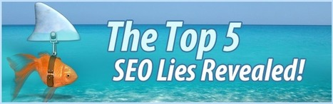 The Top 5 SEO Lies Revealed | marketingmikey | Scoop.it