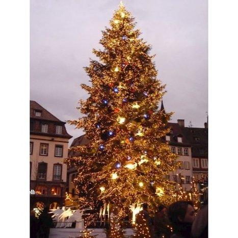 Noël 2013 à Strasbourg : Animations et Marché de Noël | beaux sites et villages de France - France nicest villages and sites | Scoop.it