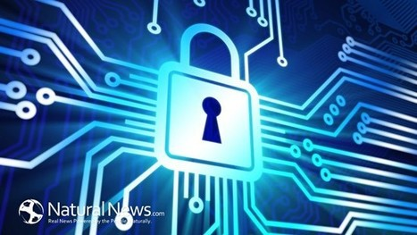 How to Get Rid of Cyber Security Issues Almost Instantly - Natural News Blogs | Free Antivirus Protection | Scoop.it