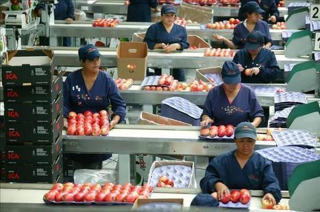 Los países en desarrollo participan de casi la mitad del comercio ... - elEconomista.es | Alimentos | Scoop.it