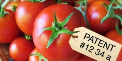 PETITION: Monsanto and Big Ag are monopolizing our seeds with their patents BAN EXTREMELY TOXIC GMO SEED/FOOD PRODUCTS - Take action now before it's too late!