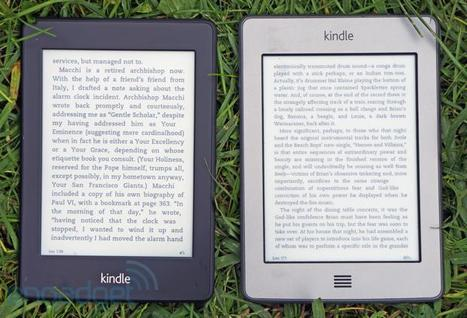 Amazon extending Kindle Owners' Lending Library to the UK, Germany and France this month | Art - Craft - Design- Net | Scoop.it