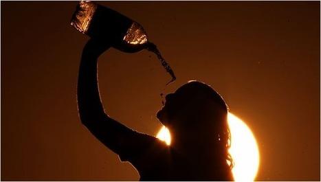 Drink healthy refreshing drink in hot summer   SeroyaMart an Online Supermarket   Scoop.it