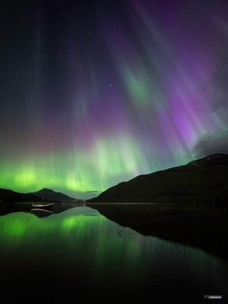 """Favorite photos of last night's aurora"" 