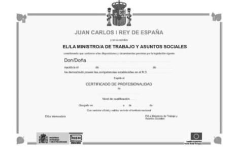 Diez claves de la nueva Formación Profesional: los Certificados de Profesionalidad | proyectovida | Scoop.it