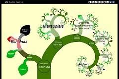 Crean el primer árbol de la vida digital con hasta 5.200 especies   Agua   Scoop.it