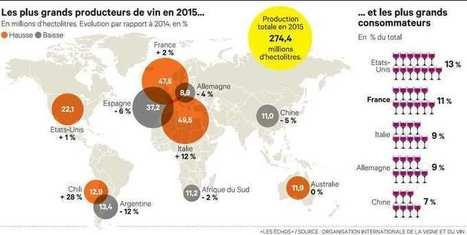 La course à l'exportation des vins du Nouveau Monde | Le vin quotidien | Scoop.it