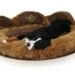Why Do Dogs Bark? 10 Dog Barks Translated | Animal Health | Scoop.it