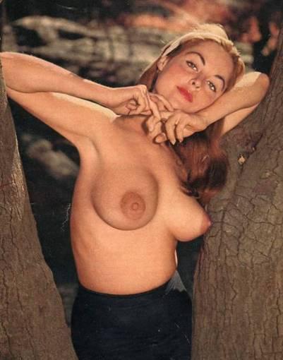 Diane Webber | Busty Boobs Babes | Scoop.it