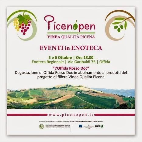 AvvinatoreBloggato: Wine tasting Offida rosso Doc, Ludi '09 e Villa Grifoni '07. | Vinitours | Scoop.it