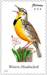 Montana State Bird Added to Songbirds Forever USPS Stamp Collection | Stamp Collecting | Scoop.it