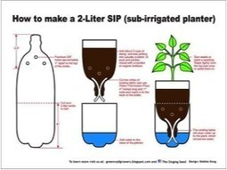 How to create a self-watering planter from scratch | Urban Gardens ... | Sustainibility | Scoop.it