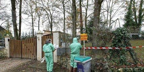 Influenza aviaire: il n'y aura pas d'abattage massif, selon le ministère | Elevage | Scoop.it