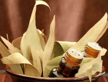7 Charismatic Natural Essential Oils, Their Curative Abilities & Uses | Natures Natural India - Bulk Essential oils Manufacturer and Suppliers | Scoop.it