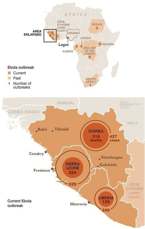 """Q&A: Ebola Spreads in Africa—and Likely Will Spread Beyond 