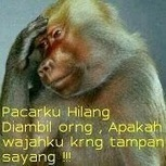 Hello, ! AGEN POKER ONLINE and Toko belanja online INDONESIA TERPERCAYA   ojodiklik Goo Blog   Or : ITUPOKER.COM AGEN POKER ONLINE INDONESIA TERPERCAYA   Scoop.it