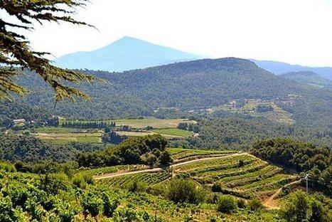 Périple autour des Dentelles 2012 - Domaine des Bernardins | Domaine des Bernardins & WEB | Scoop.it