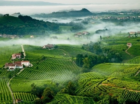 Prosecco heads hit out at imitators | Vitabella Wine Daily Gossip | Scoop.it