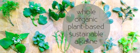 edible alchemy | zero food waste | Scoop.it