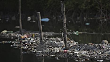 L'eau des sites de compétition des Jeux olympiques de Rio est contaminée | ICI.Radio-Canada.ca | SandyPims | Scoop.it