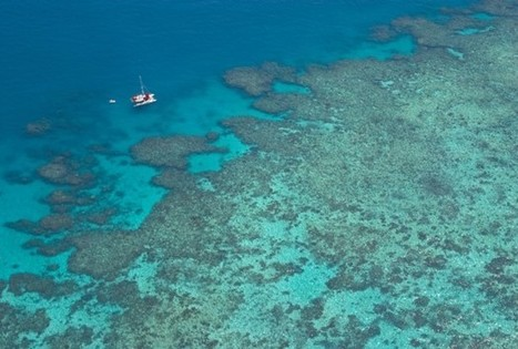 Past tells a lot about what Great Barrier Reef faces today | Geology | Scoop.it
