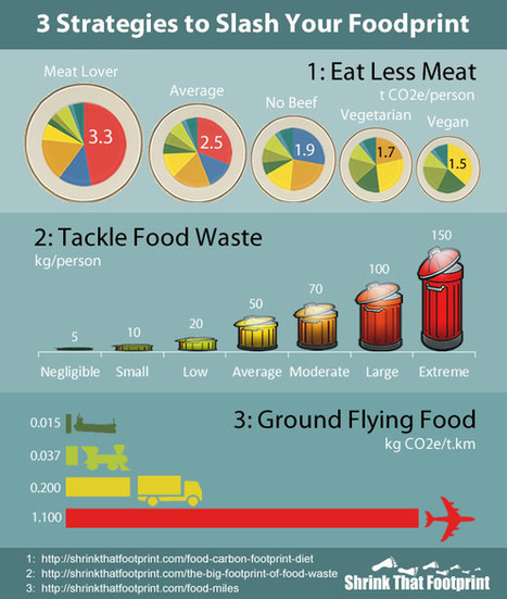 Food and Carbon Footprint Problems | The Energy Collective | Sustain Our Earth | Scoop.it
