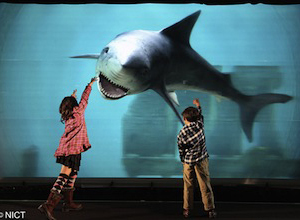 Japan Unveils World's Largest 3D Display (video) | Singularity Hub | Machinimania | Scoop.it