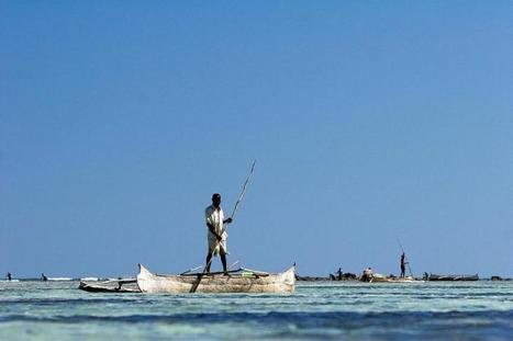 Western Indian Ocean communities play vital role in conservation | Sustain Our Earth | Scoop.it