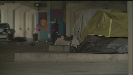 Unity of Greater New Orleans releases report on homelessness - WDSU New Orleans | Homeless Issues: Humane Exposures | Scoop.it