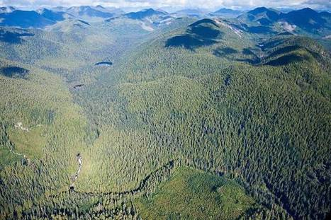 Study links forest loss in Canada with endangered habitats | Our Evolving Earth | Scoop.it