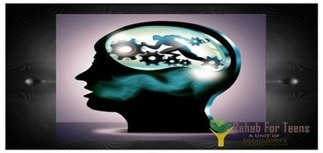 Alcohol's Effect on Adolescent Brain: An Outlook | Rehab For Teens | Scoop.it