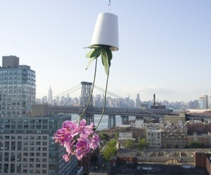 Sky Planter by Boskke | materialicious | Architecture and Urban Planning | Scoop.it